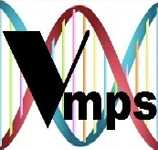 Sponsor VMPS