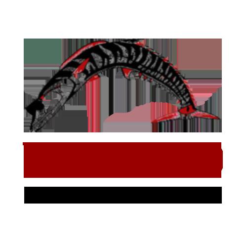 Sponsor Wahoo Swim Academy