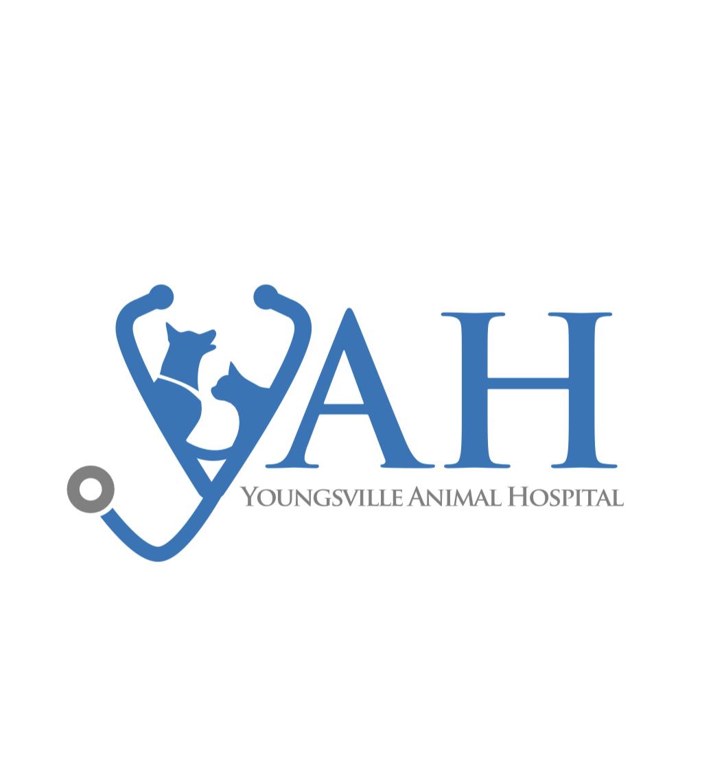 Sponsor Youngsville Animal Hospital